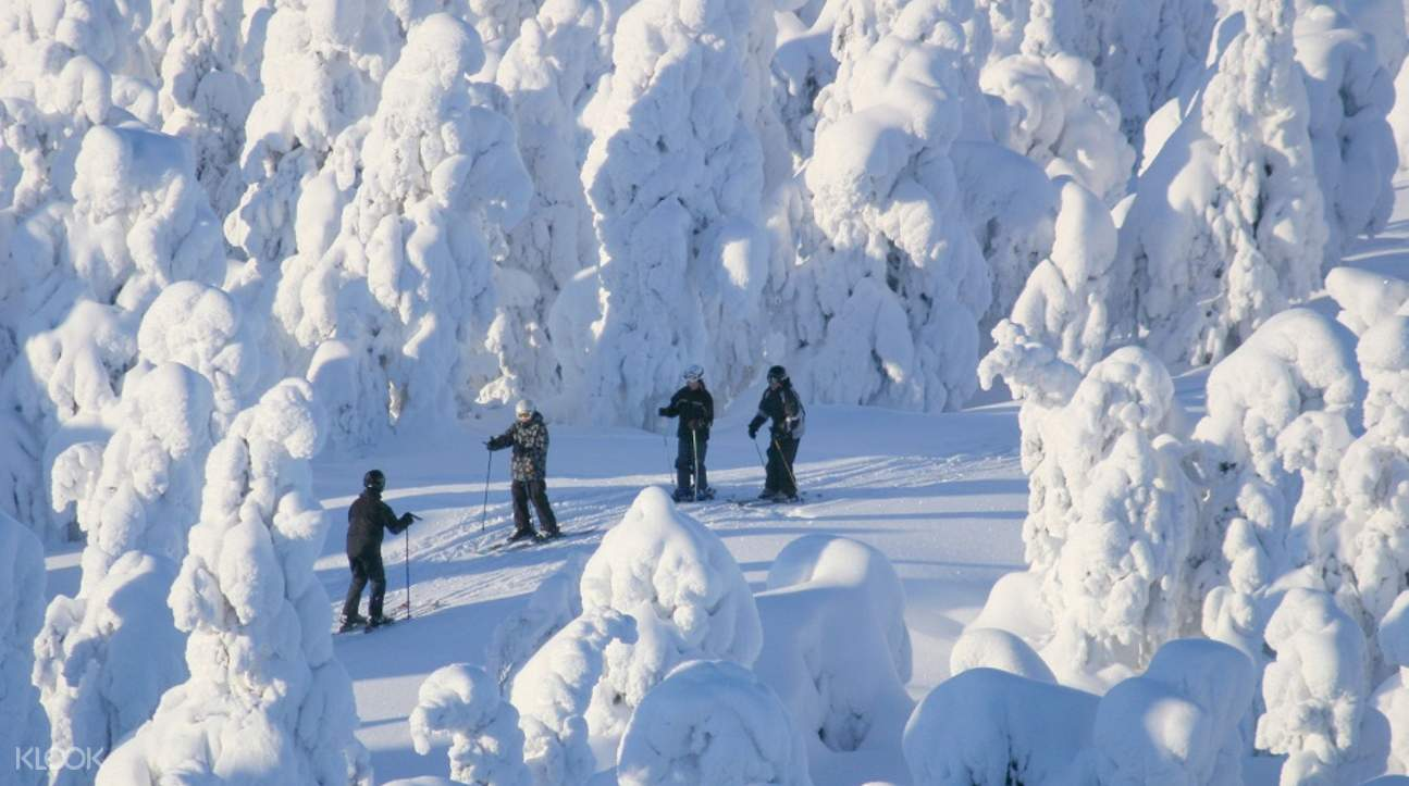 group of people skiing in lapland